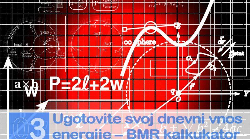 Najboljši vodnik za hujšanje - dnevna poraba energije in BMR kalkulator