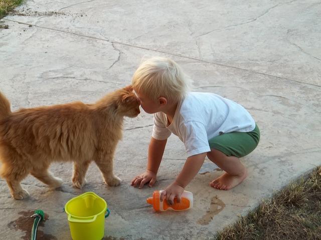otroci-bolj-zaupajo-hisnim-ljubljenckom-kot-bratom-ali-sestram-1
