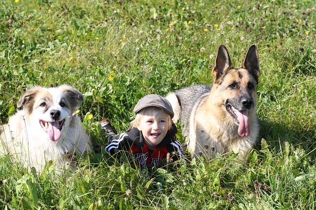 otroci-bolj-zaupajo-hisnim-ljubljenckom-kot-bratom-ali-sestram