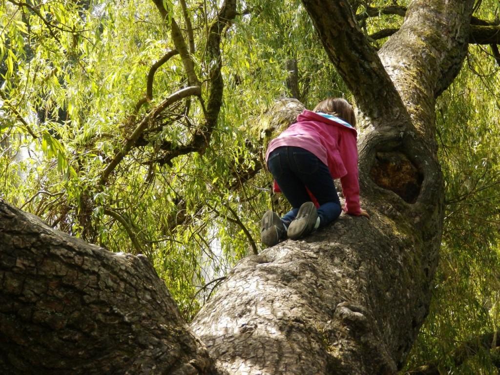 Tvegana igra - zakaj jo otroci obožujejo in potrebujejo