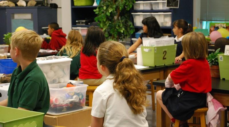 Noam Chomsky: rangiranje in ocenjevanje otrok in učiteljev je škodljivo