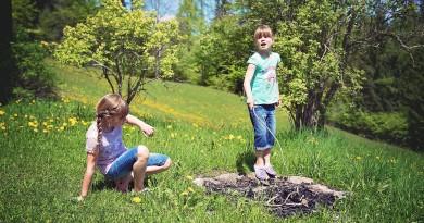 Pozor, klopi prežijo (tudi) na otroke!