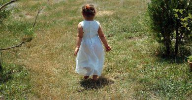 Razvoj enoletnika
