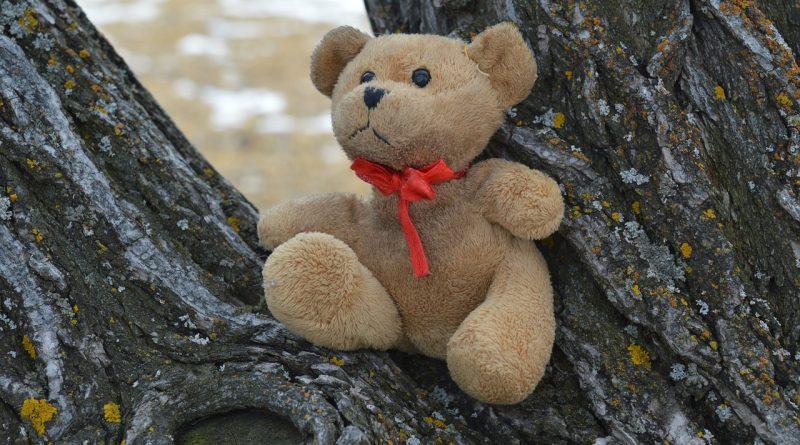 Danajine zlate pravljice: Izgubljeni medvedek - pravljice za lahko noč