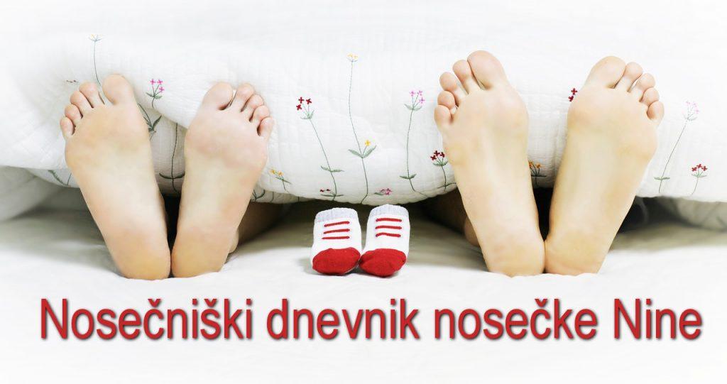 Nosečniški dnevnik nosečke Nine