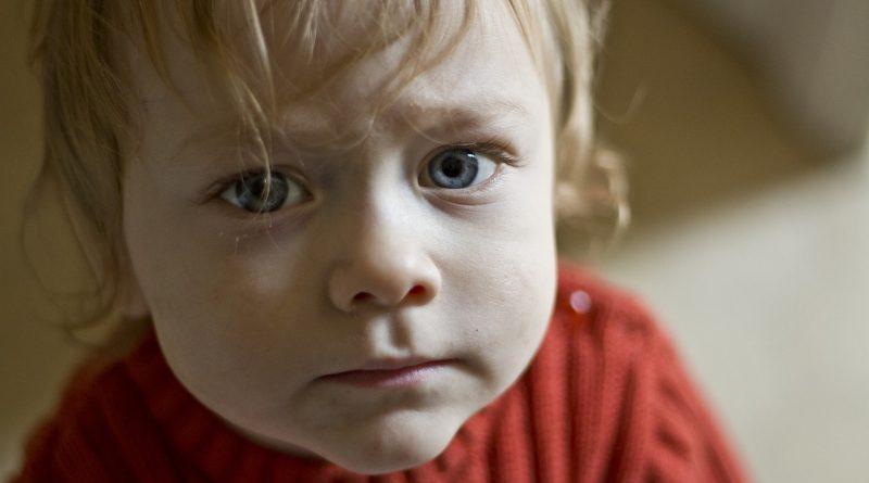 Malčki in samokontrola: starševski priročnik za preživetje