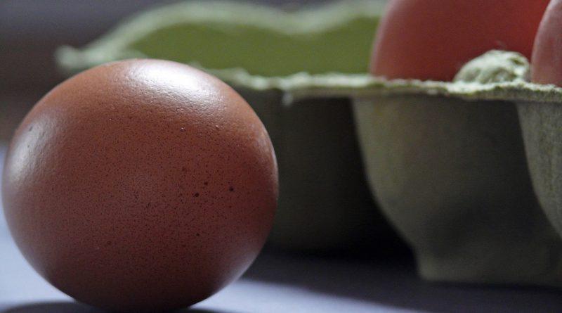 Alergija na jajca