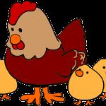 Mala rdeča kokoška – pravljica za lahko noč