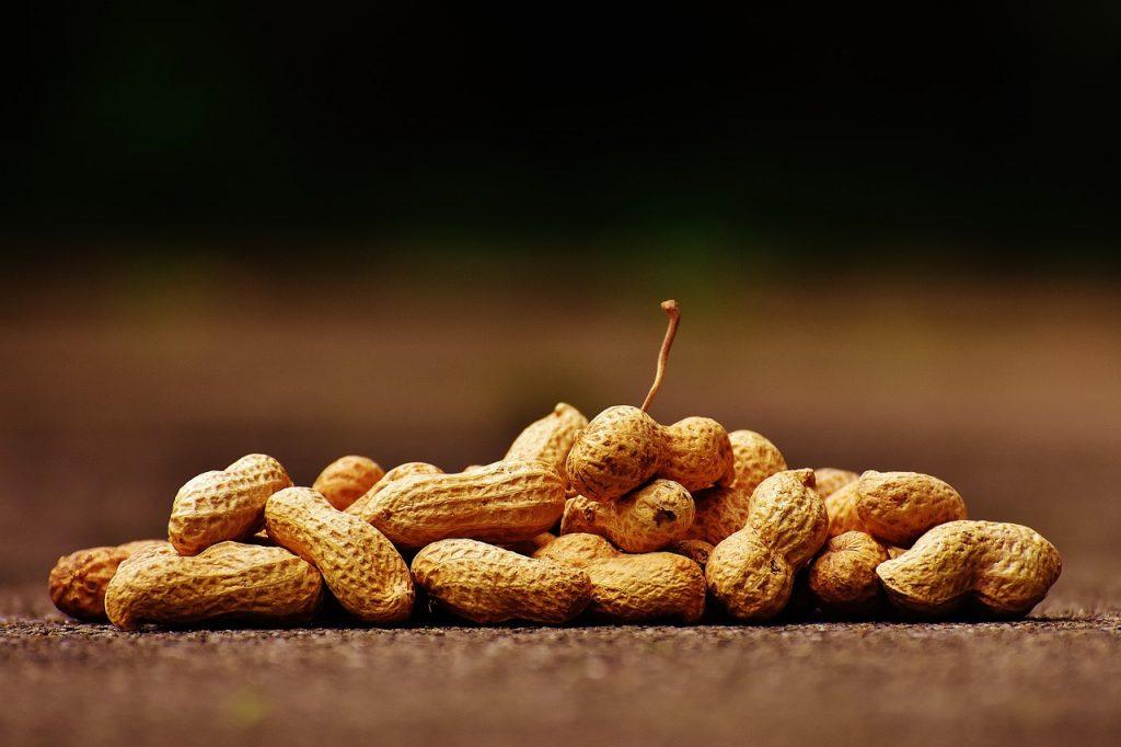Alergija na oreščke in arašide