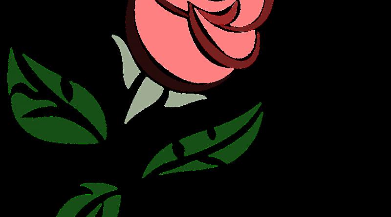 Majhen roza vrtnica- pravljica za lahko noč