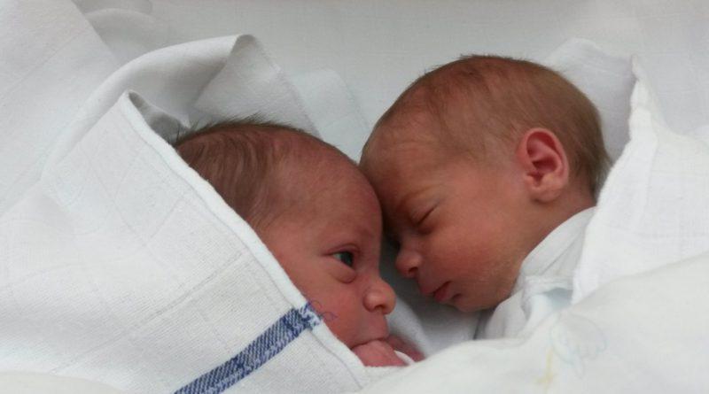 Kako preživeti prvo leto z dvojčki