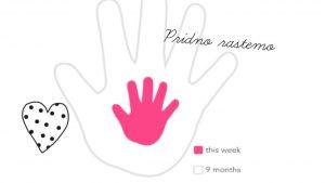 Nosečniški dnevnik 2: 19. teden nosečnosti