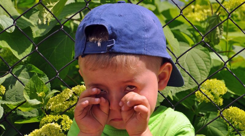 20 reči, ki jih lahko rečete otroku namesto »Ne jokaj«