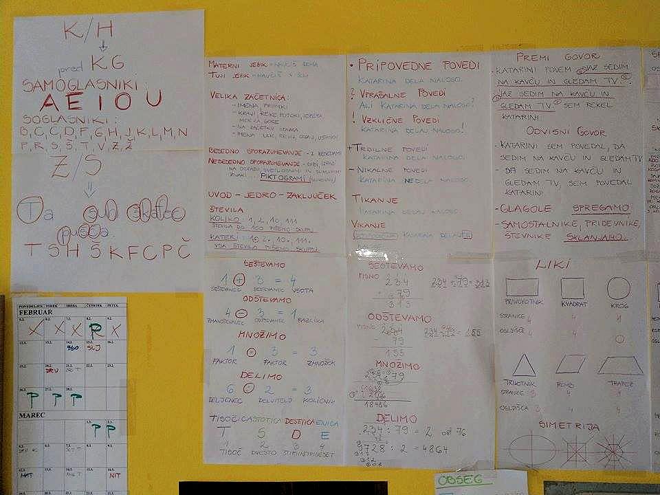 """""""V današnjem šolskem sistemu se učijo veliko neumnosti in balasta"""", pravi Alenka"""