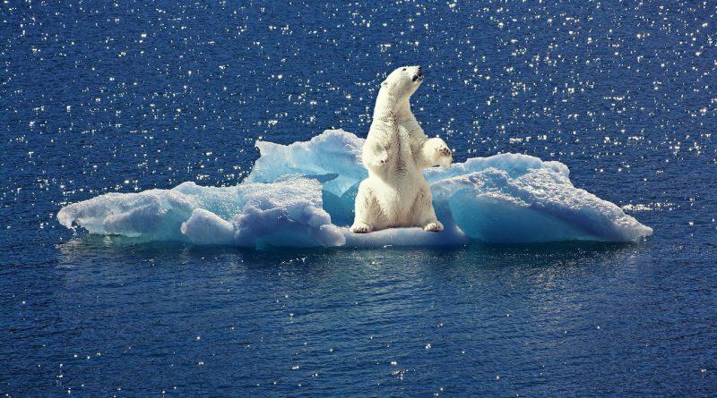 Podučite otroke o klimatskih spremembah